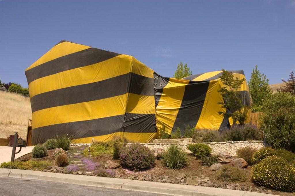 Eagle Eye Termite and Pest Control - Termite Treatment 2